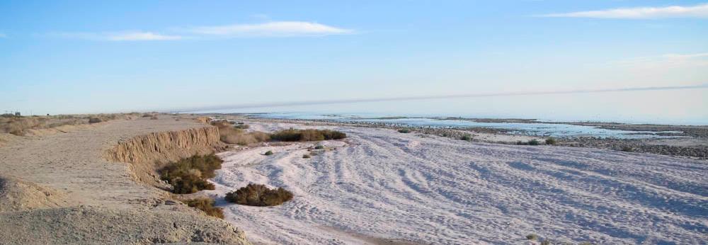 Salton Sea Beach, California, create my own reality, A Daily Affirmation, www.adailyaffirmation.com